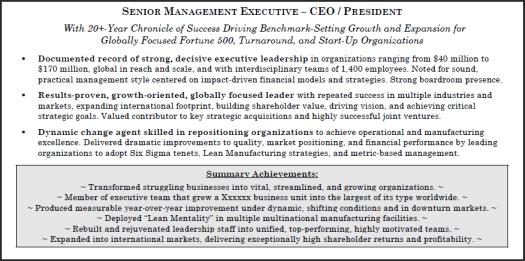 Branded resume profile